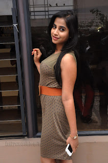 Swathi Dixit Pictures at break up press meet 011.jpg