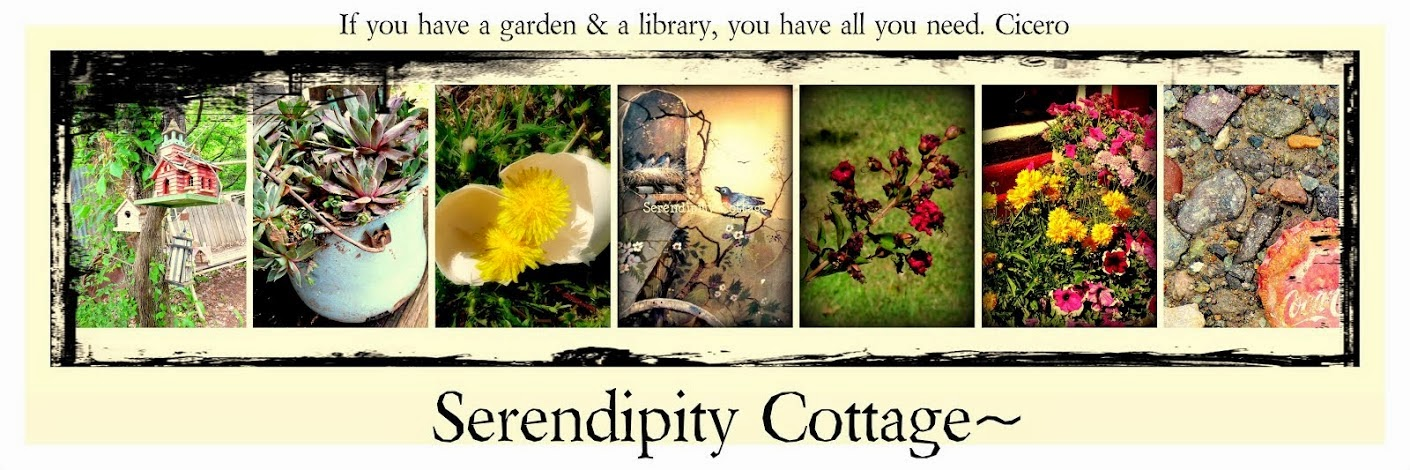 Serendipity Cottage