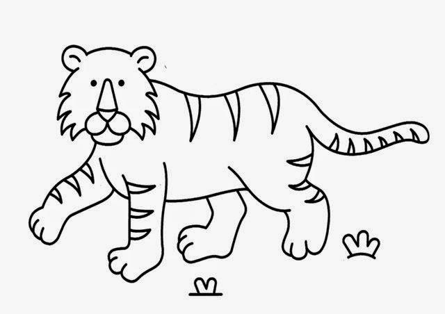 La Chachipedia: Dibujos de tigres para colorear y para imprimir ...