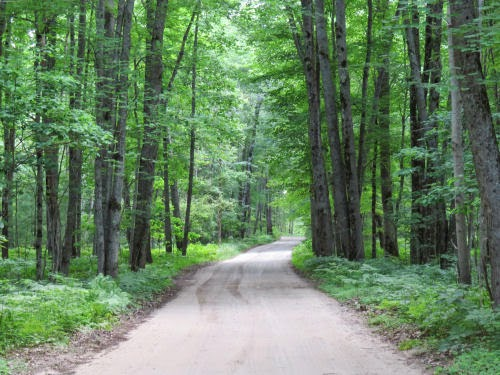 Astor Road