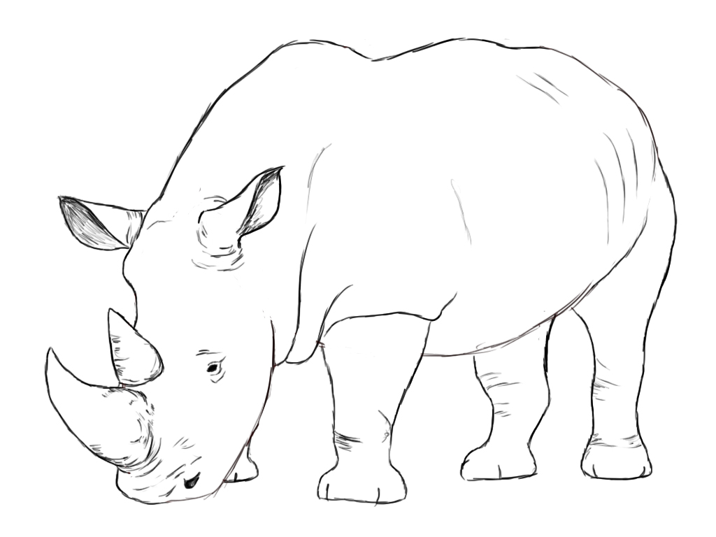Rhinoceros drawing for kids - photo#1