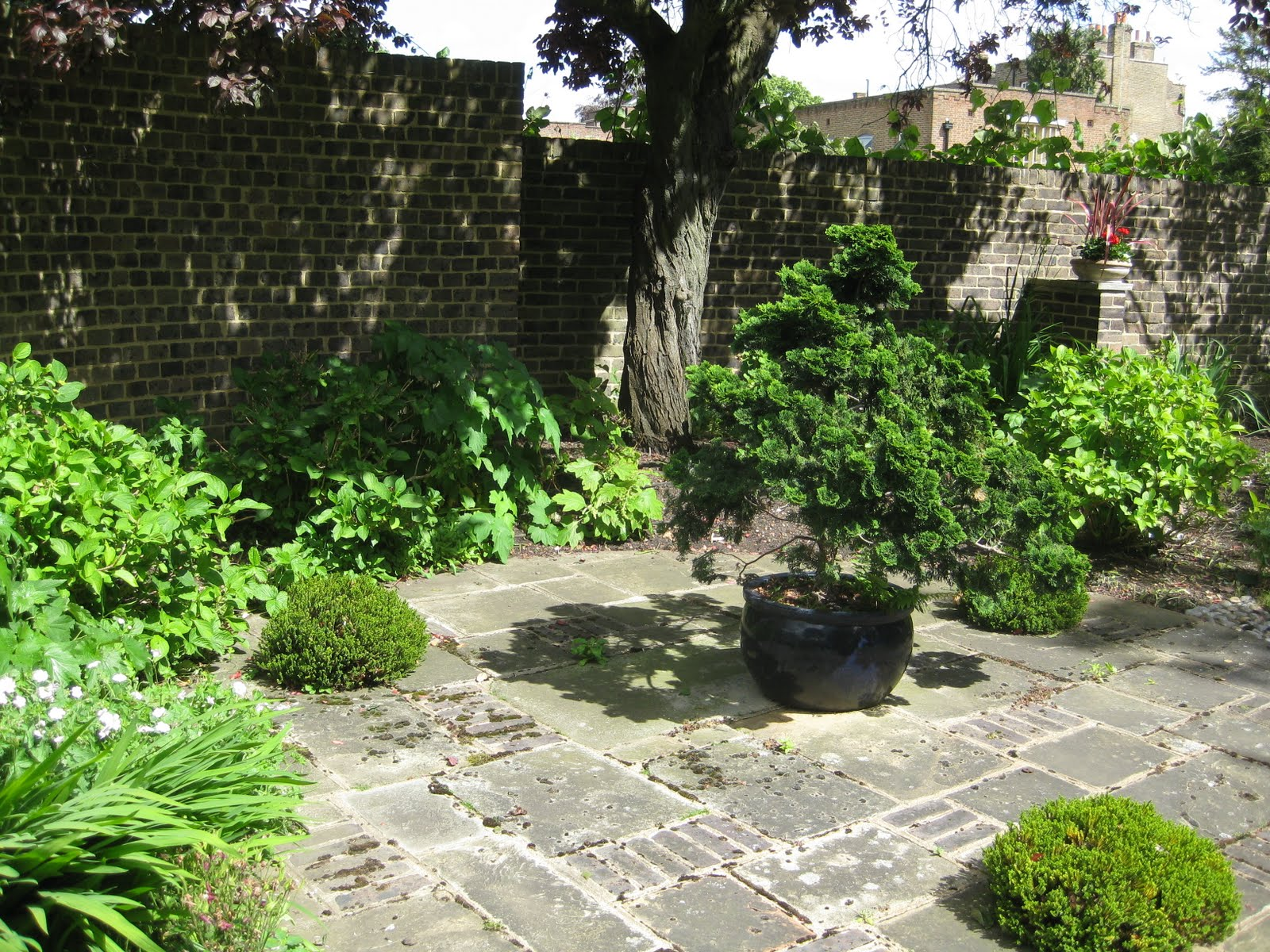 Ham photos rear garden at ormeley lodge -  Few Steps Across The Avenue Takes You To The Other Gate House Which Is Now Little More Than An Ornament In The Garden Of The Much Grander Avenue Lodge