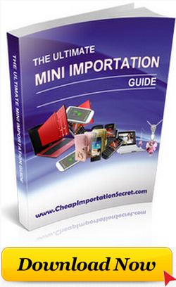 ONLINE MINI IMPORTATION GUIDE