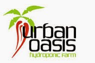 Urban Oasis Farm
