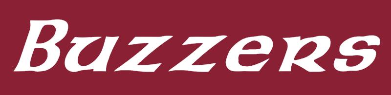 Galway Buzzers