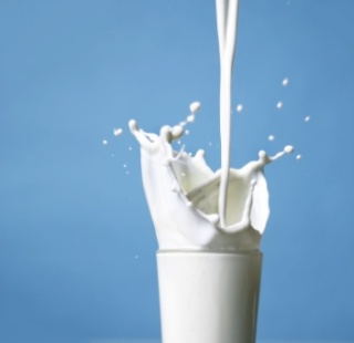 Diet Options for the Lactose Intolerant