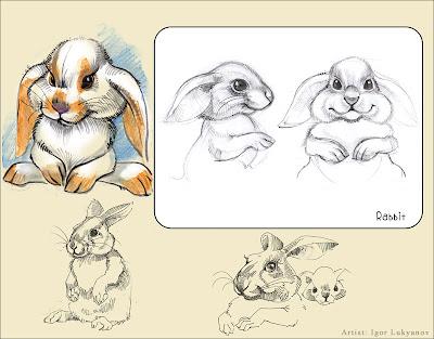 cute stuffed bunny rabbit