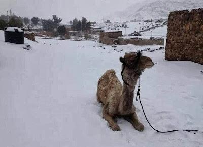 NIEVE EN EGIPTO DESPUES DE 122 AÑOS