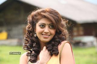 Pranitha-New-Saree-Photos