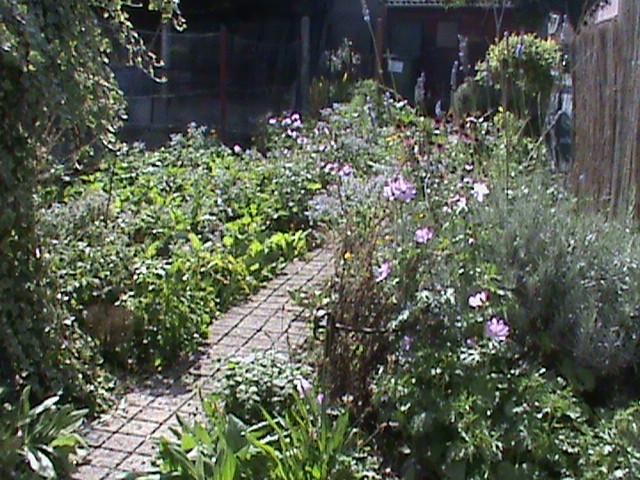 Jardin ardennais septembre 2015 for Habitat jardin 2015