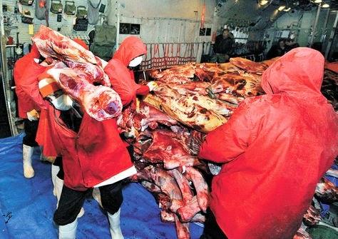 Consumo de carne en Bolivia