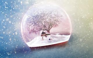 december frost (10)