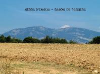 Les serres d'Ensija i Rasos de Peguera des de la carretera de Sant Sadurní de Fonollet