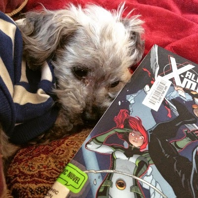 Murchie curls up on a red tapestried comforter. He wears the same t-shirt as above. Beside him is a hardcover copy of The Ultimate Adventure. Most of the cover is obscured, but a red-haired white girl with glowing pink eyes and a green-and-white spandex costume is visible.