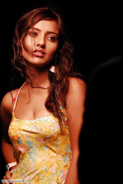 Neha_Sharma_Siruthai_Puli_stills++%281%29