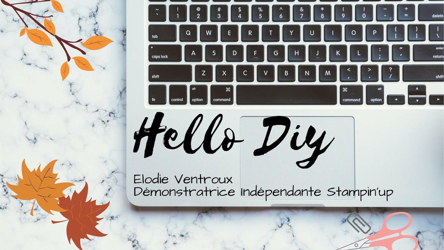 ► Hello Diy - Elodie Ventroux◄