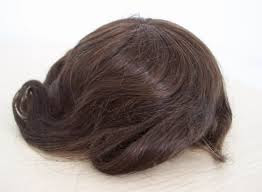 Michael Voris wig