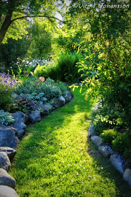 Trädgårdsgång