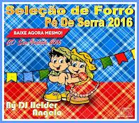 Seleção de Forró Vol-1 Pé de Serra 2016 Sem Vinheta By DJ Helder Angelo
