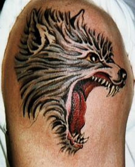 Tattoo design wolf tattoos for Tattoos of wolves