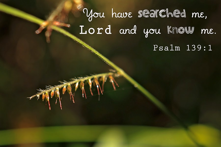 You have searched me, Lord and you know me.