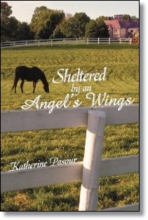 Sheltered by an Angel's Wings (Katherine Pasour)