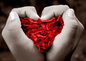 As rosas do coração...