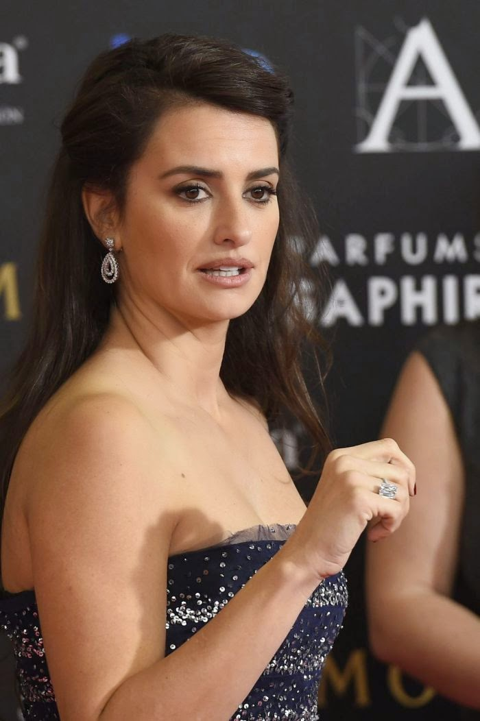 Did you love the look as much I did? Perhaps Penelope Cruz was trying to draw an attention from her facial area.  So when the 40-year-old threw on a dress with a plunging, I think we're totally look to her art as she attended the Goya Film Awards at Madrid, Spain on Saturday, February 7, 2015.