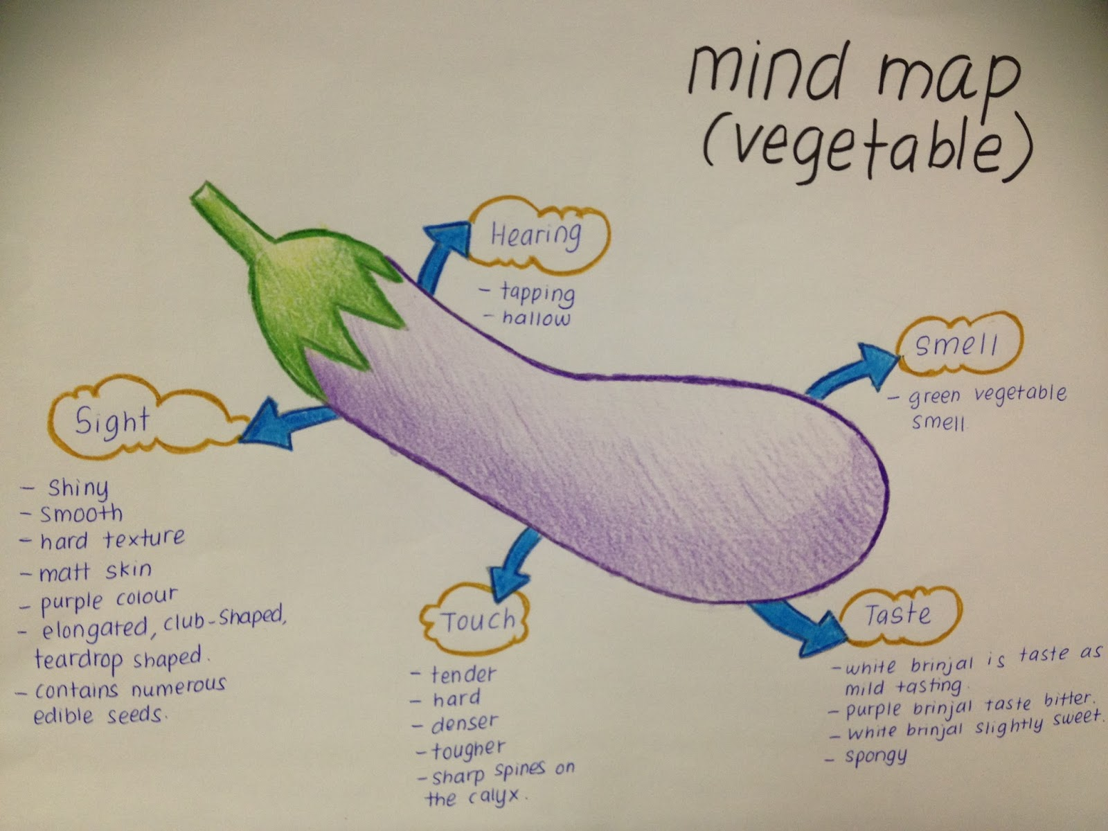 rathinithevindran english 2 engl0205 this is the mindmap that i have done before start to do the descriptive essay about the vegetable brinjal in this mindmap i have describe about the brinjal