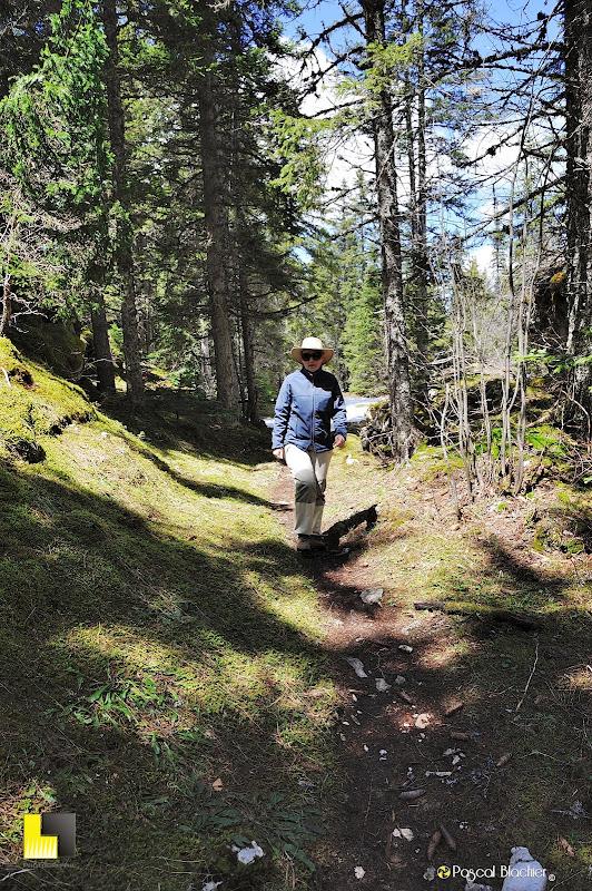 valérie blachier dans la forêt photo pascal blachier