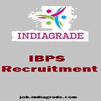 IBPS Recruitment 2015