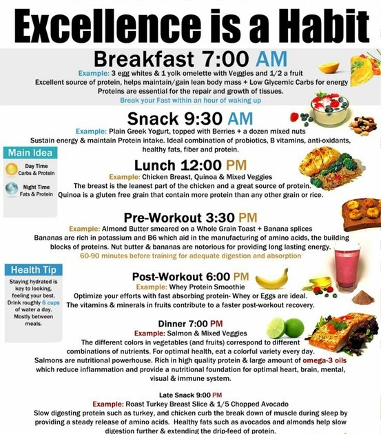 Health and Fitness: Excellence is a Habit - Healthy Eating
