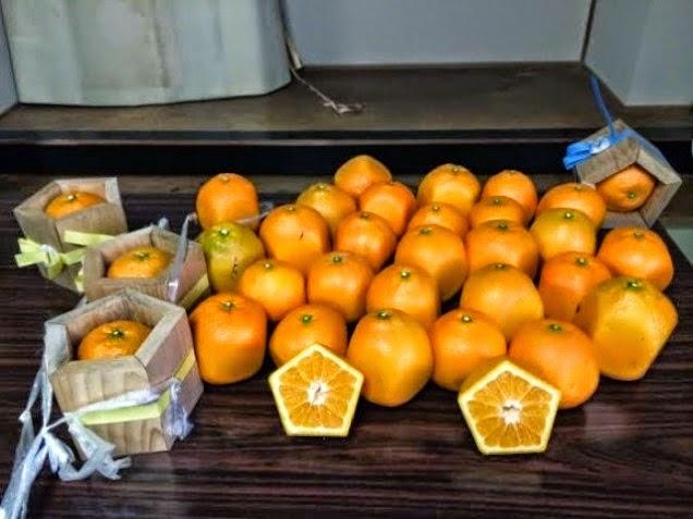برتقال خماسي الأضلاع اليابان
