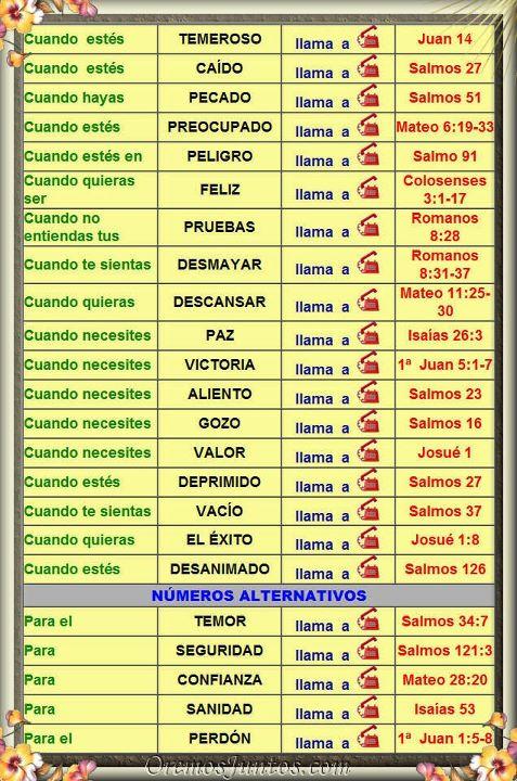 La biblia la tenemos gracias a los monjes catlicos que la copiaron http3bpspot obw6kvbsx ytrktjz1lcqiaaaaaaaaolk6q1kd4rssbks1600telefonosg urtaz Images