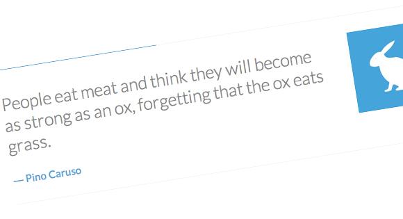 nice quote rotator