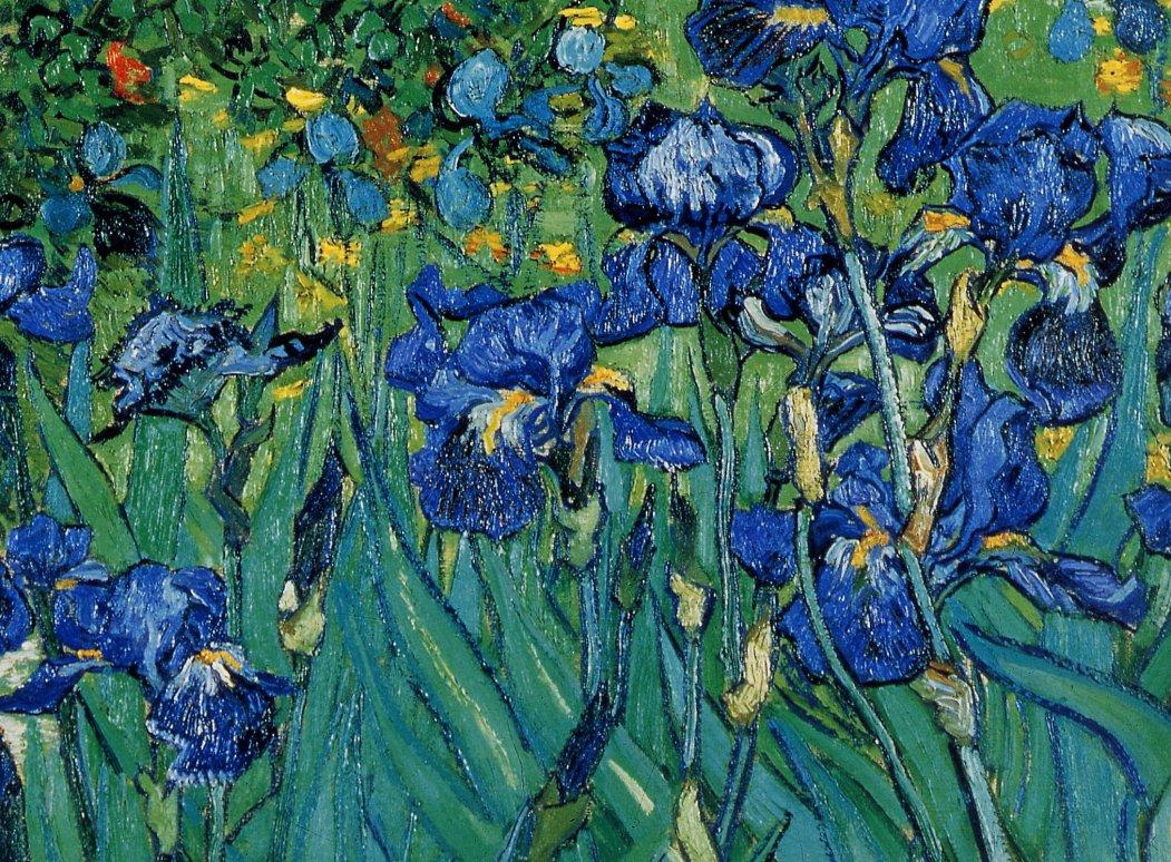 My side of paradise for Van gogh irises