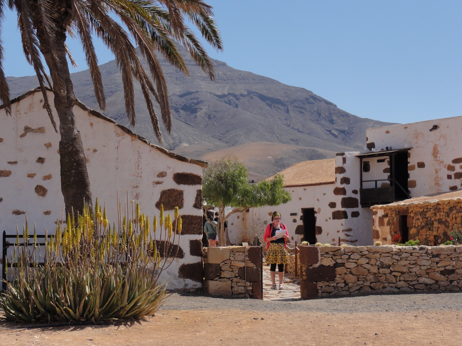 Toosoveral: Fuerteventura