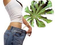 Como arreglar la grasa superflua del vientre y el talle
