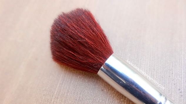 ELF Total Face Brush Review , Pictures and Price