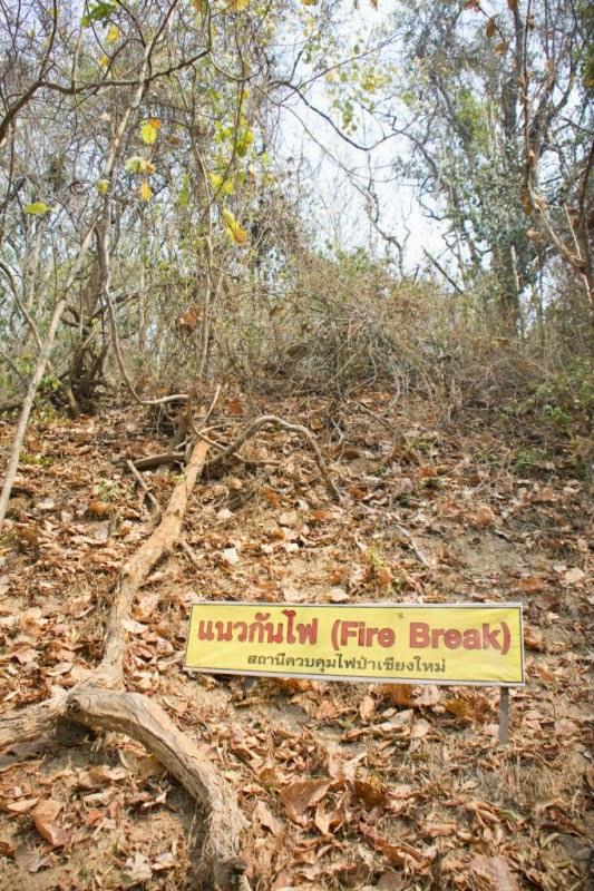 Verbot Feuer zu machen Chiang Mai