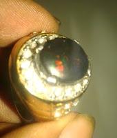 merawat black opal minyak GPU