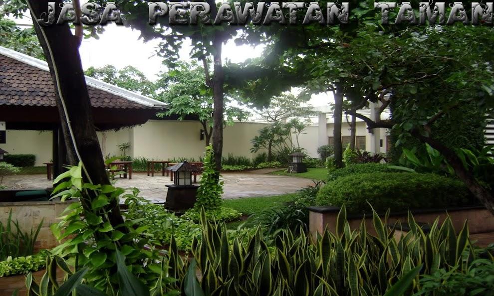 JASA PERTAMANAN | PERAWATAN | TAMAN  | JAKARTA | BOGOR | DEPOK | TANGERANG | SERPONG | BEKASI