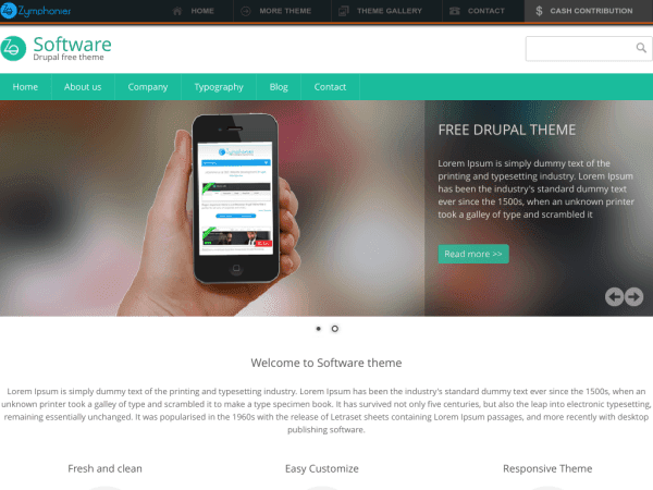Software drupal theme