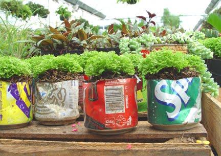 Universo vivo un huerto urbano en tu terraza con - Reciclar latas de refresco ...