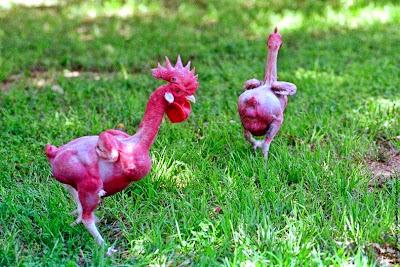 Mengintai Anak Ayam B@gel (18SX)