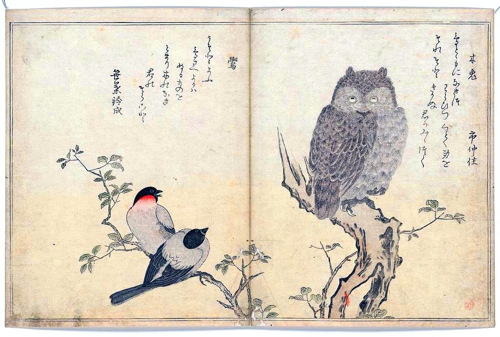 List Of Synonyms And Antonyms Of The Word Japanese Birds Symbolism