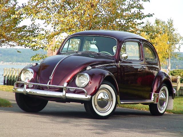 mycraziestcar.blogspot.com