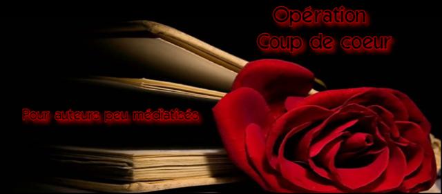 http://bouquinsenfolie.blogspot.fr/2013/06/coupdecoeur-auteurpeumediatise.html