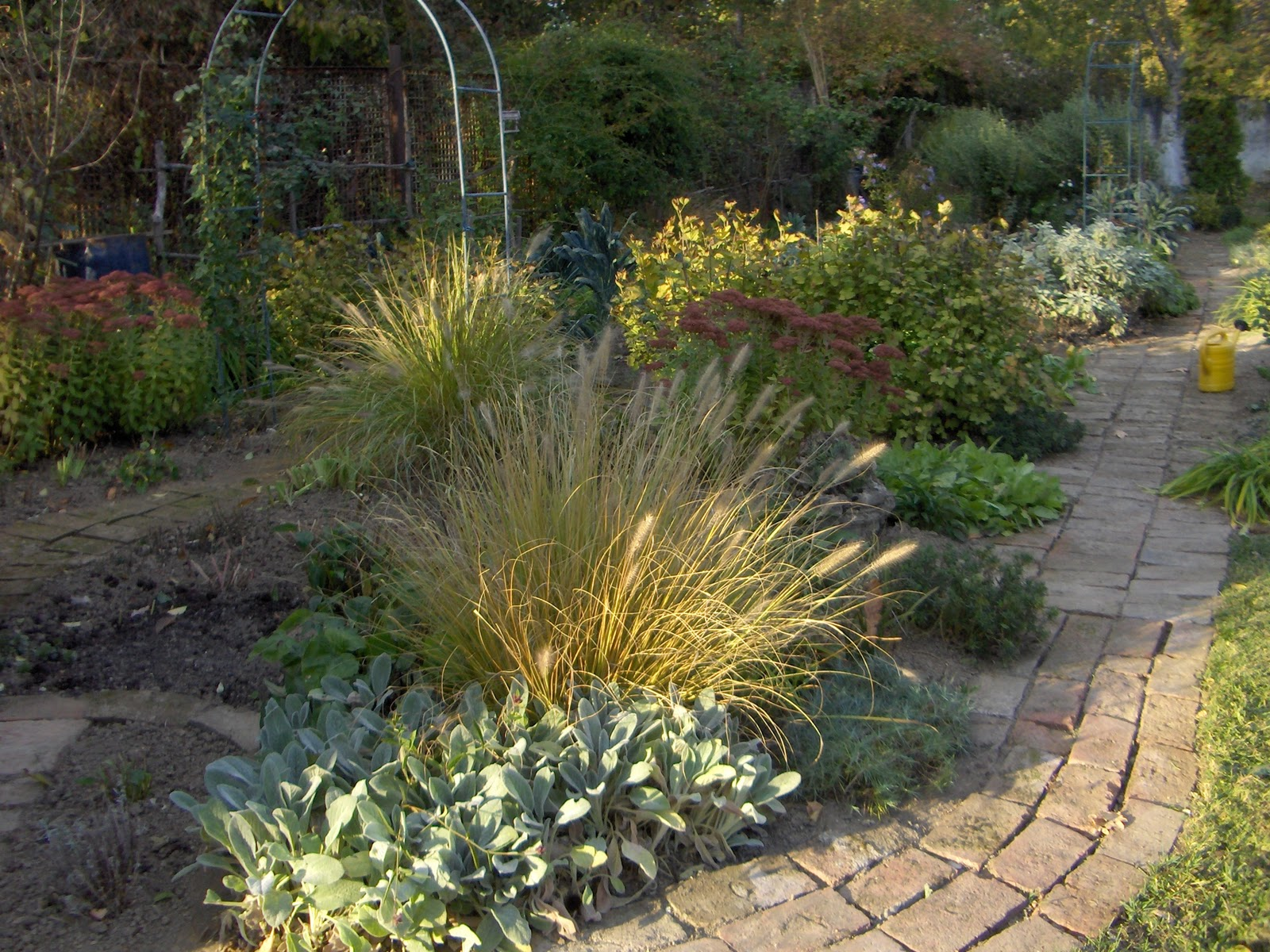 Busy bee preparing garden for winter - How to prepare garden for winter ...