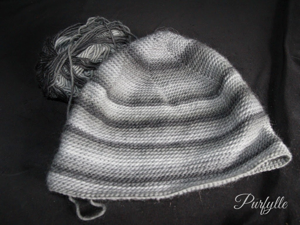 Monochromatic beanie for hubby